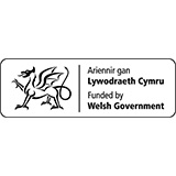 Welsh Government | NCPHWR | National Centre for Population Health & Wellbeing Research
